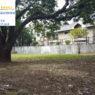Ayala Alabang Lot For Sale - Tamarind