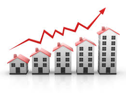 Vibrant Spot For Investors